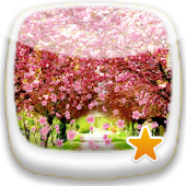 Cherry blossom ★ Wallpaper 09