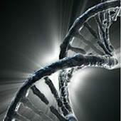 Live Wallpaper - DNA