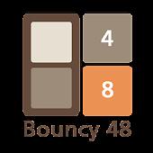 Bouncy 48