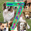 Count Dogs 1-10 FREE icon