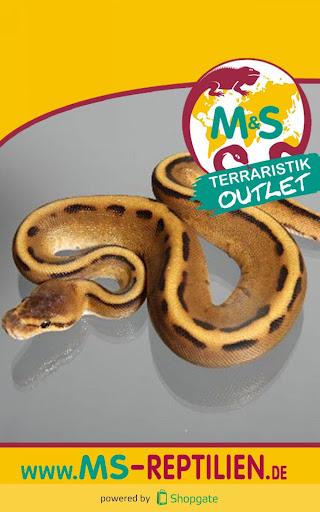 M S Reptilien