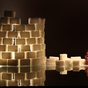 Sugar fotress by La Prairie - Artistic Objects Still Life