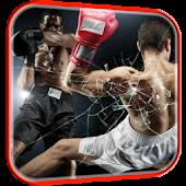 Boxing Video Live Wallpaper