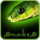 Snakes and Green Neon GO Theme