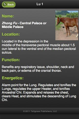 Equine AcuPoints- screenshot