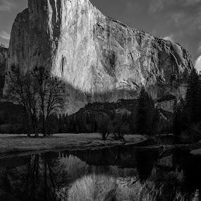 El Capitan by Jeff Fahrenbruch - Black & White Landscapes ( reflection, national park, yosemite, el capitan, merced river )