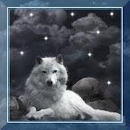 Wild Wolf Voices HD LWP