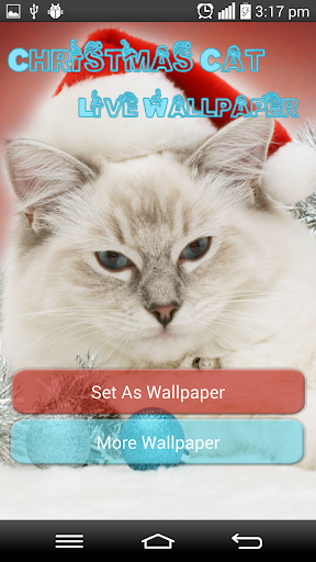 Christmas Cat Live Wallpapers