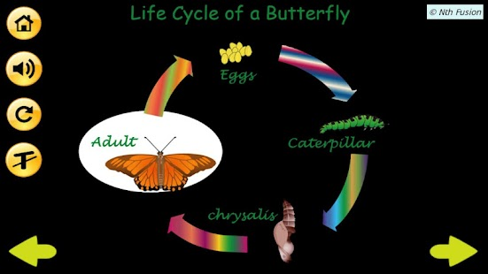 A Life Cycle App- screenshot thumbnail