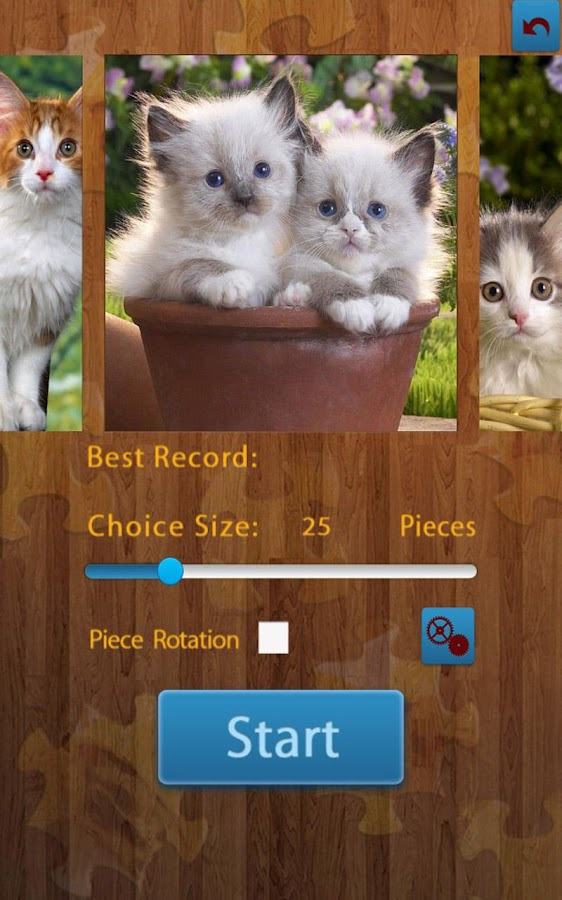 Cats Jigsaw Puzzles- screenshot