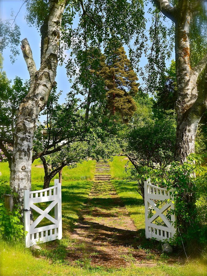 Inviting view by Maritha Juhlin - City,  Street & Park  City Parks ( open gate, inviting, white gates, park, path, way, summer, view, garden, gate,  )