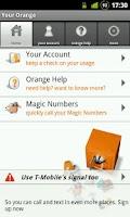 Screenshot of Your Orange