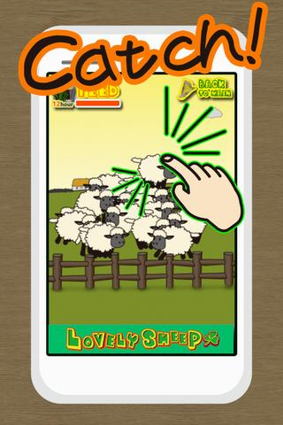 Lovely Sheep- screenshot