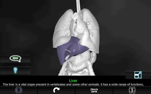 玩免費醫療APP|下載Organs 3D (Anatomy) app不用錢|硬是要APP