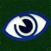 Eye Terms