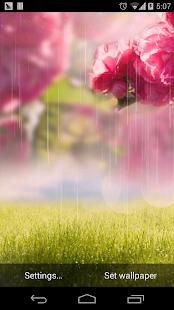 大自然草地花朵壁紙