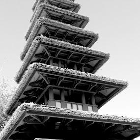 Tiki Tiki by Christopher Charlton - Black & White Buildings & Architecture ( black and white, zen, asia, architecture, asian )