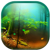 Forest 3D Live Wallpapers