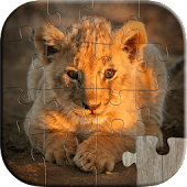 Cute Animals Kids Puzzles