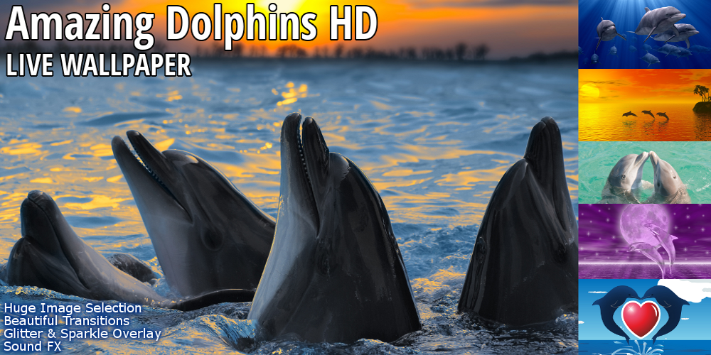 TOP Dolphins HD Live Wallpaper - screenshot