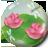 Magic Pond Theme icon