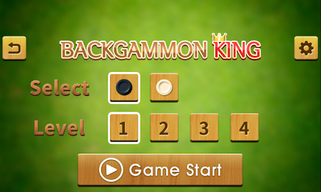 Backgammon King 14.0 screenshot 332324