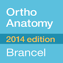OrthoAnatomy (Brancel)