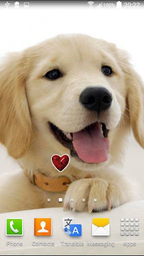 無料个人化Appの子犬アニメ壁紙|記事Game