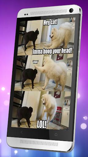 LOL搞笑图片