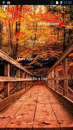 My Autumn live Wallpaper