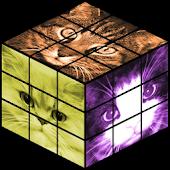 Cats Rubik's Cube