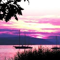 Violet Sunsets Live Wallpaper icon