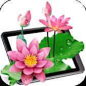 Lotus Pond Live Wallpaper Free
