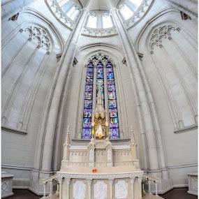 La Plata Catedral by Sergio Moya - Buildings & Architecture Public & Historical ( argentina, church, cathedral, architecture, catedral )