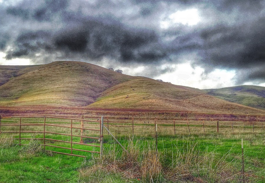 Dark Beauty by Diane Clontz - Novices Only Landscapes ( hills, dark beauty, dark clouds, california hills, green grass )
