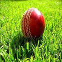 Howzat Cricket 2D icon