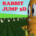 Rabbit Jump 3D icon