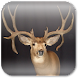 Deer Hunting Live Wallpaper ★ icon