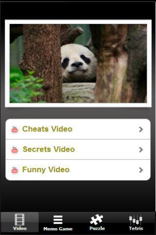 Panda Cute Run