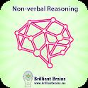Train Your Brain NVR icon
