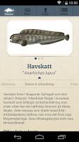 Screenshot of Fisknyckeln