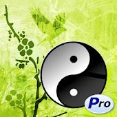Confucius Quotes Pro