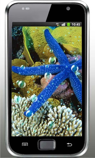 Sea Stars Free HD LWP