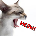 The Cat's Meow icon