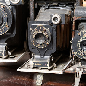 Kodak Rescues by Alan Roseman - Artistic Objects Antiques ( old camera, bellows, lenses, days gone by, camera, kodak, vest pocket, antique,  )