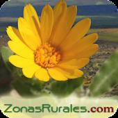 Casas Rurales en Zonas Rurales