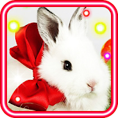 Easter Bunny Cute HQ LWP