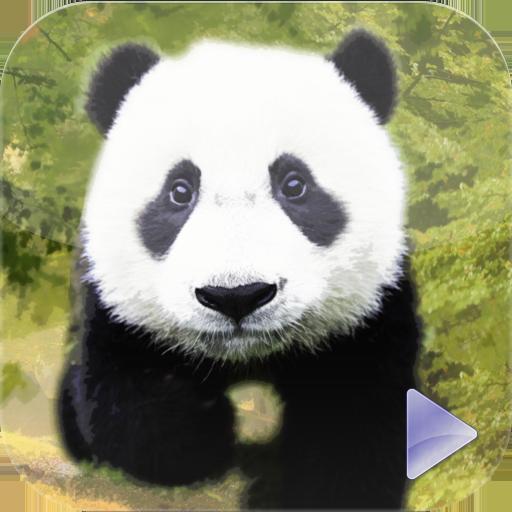 动物世界 教育 App LOGO-APP試玩