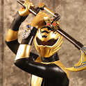 Power Rangers Fan Edition