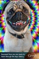 Screenshot of Funny talking dog